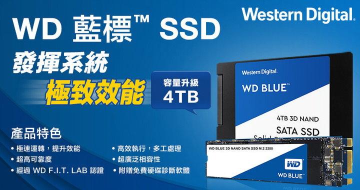 WD_SSD內接藍標